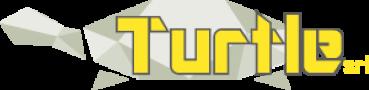 Turtle srl